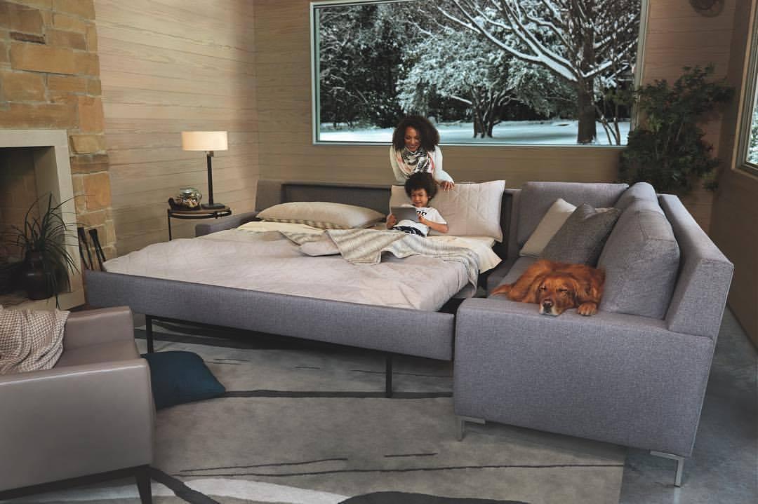 Circle Furniture Natural Talalay Latex Mattress And Pillow In Middleton Ma