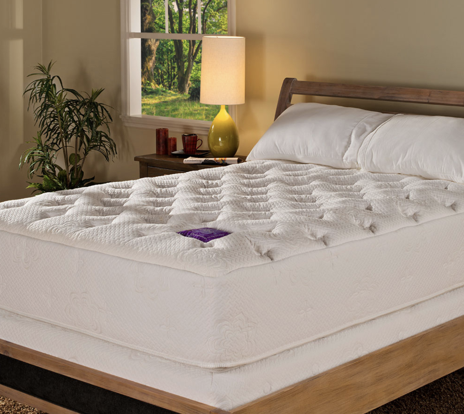 City Mattress – Natural Vita Talalay Latex Mattress Store In Fort Myers Florida