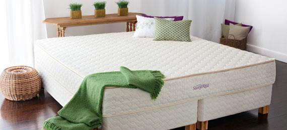 Green Design – Natural Talalay Latex Mattress Store In Princeton Nj