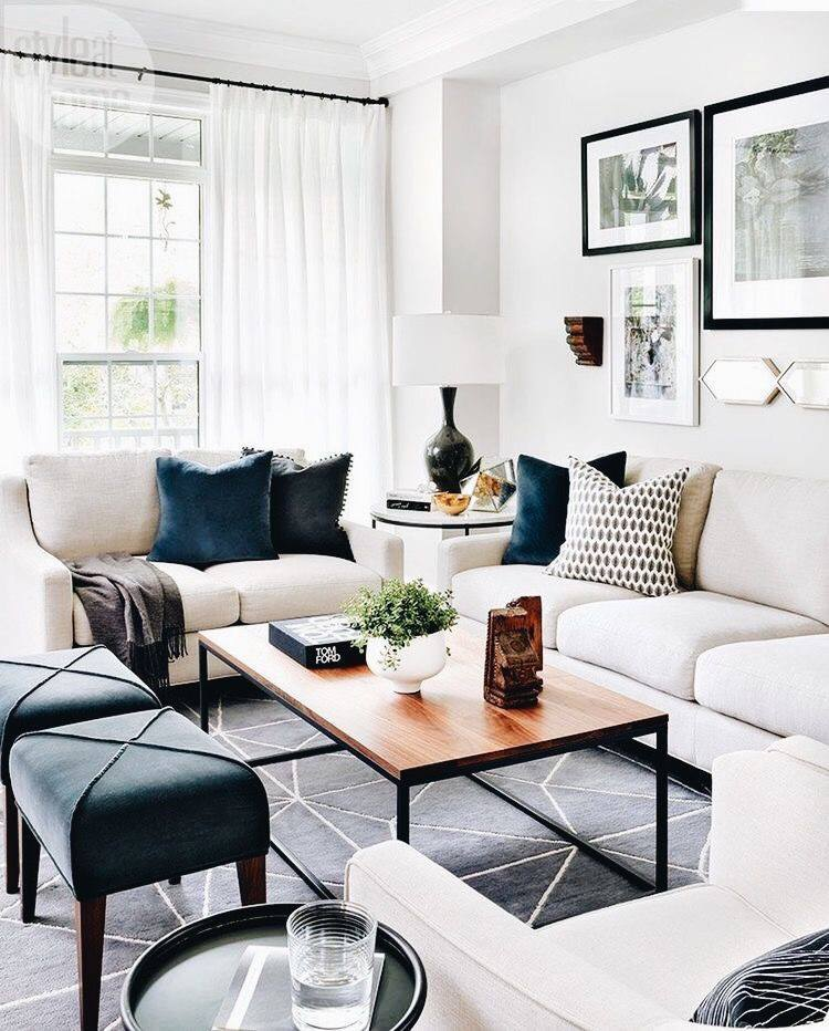 Decorating Idea Living Room