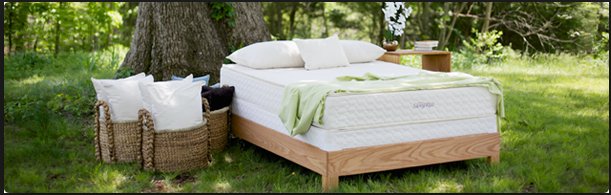 Sleighters Furniture And Sleep Natural Vita Talalay Latex Mattress In New Oxford Pennsylvania