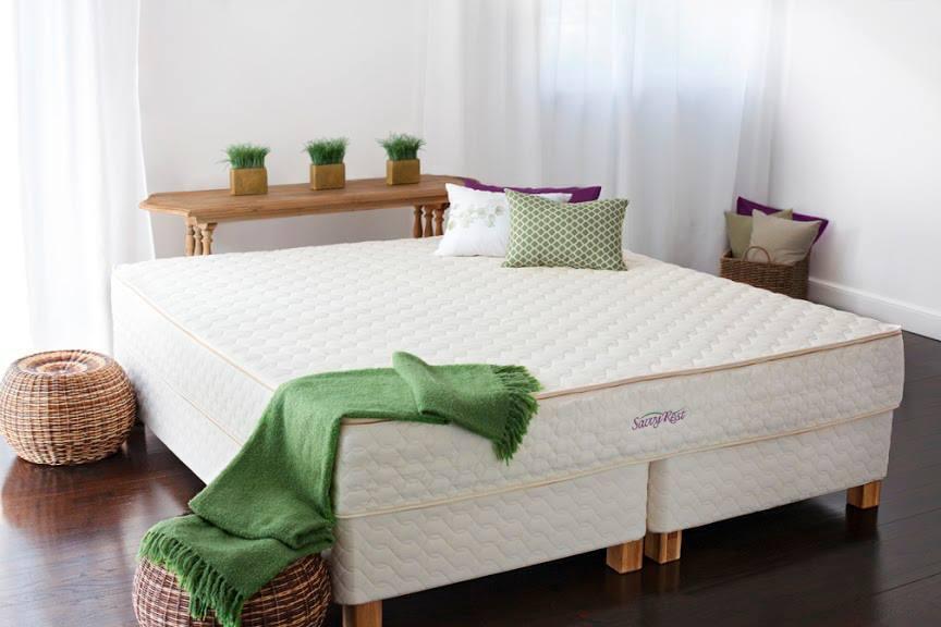 The Natural Sleep Shop – Natural Vita Talalay Latex Mattress Store In Cranberry Township Pennsylvania