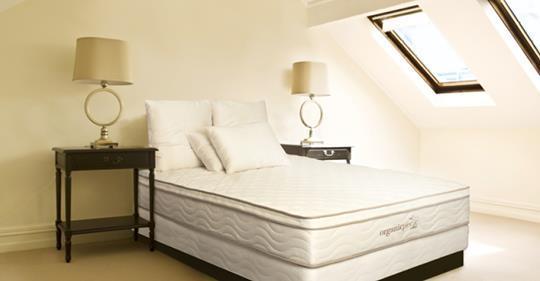 The Organic Bedroom – Natural Talalay Latex Pillow Store In Raleigh North Carolina