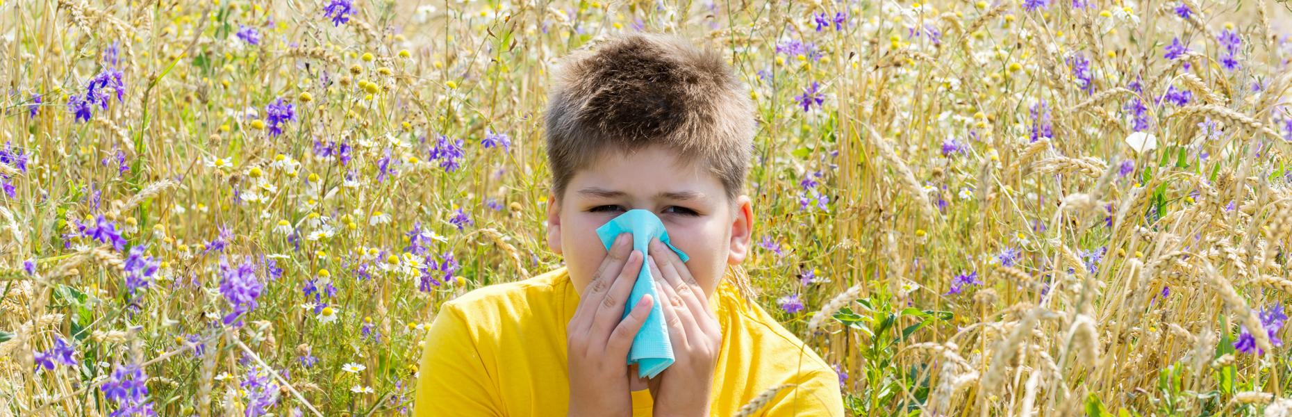Allergy 2