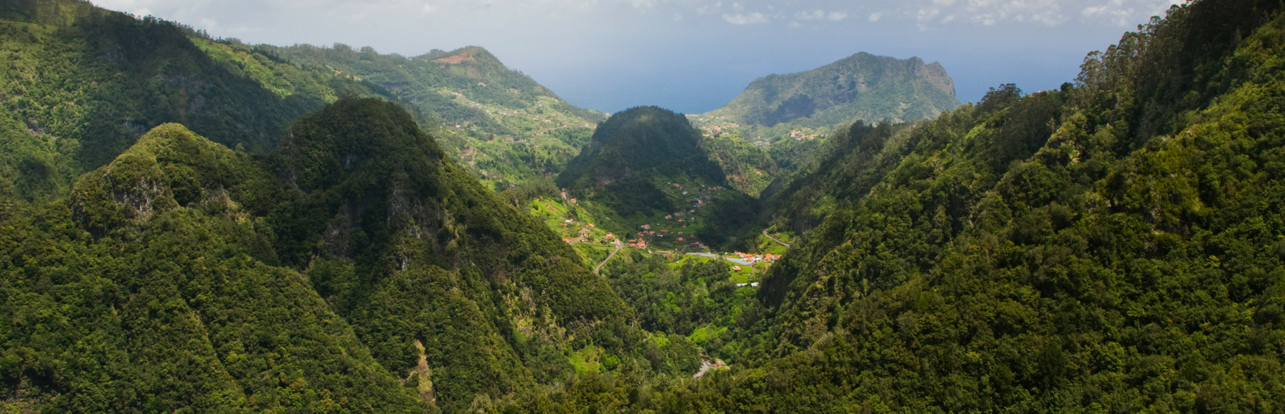 Fsc And Rainforest Alliance Certificates Vita Talalay