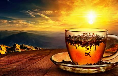 Best Tea For Sleep Wild Lettuce Teajpg