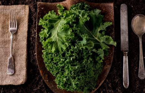 Recipes With Kale